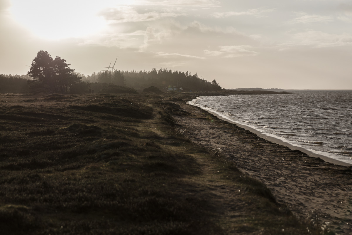 PLACES - Ringkøbing Fjord I